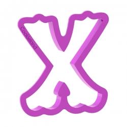 Litera X