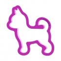 Pies Chichuachua