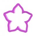 Kwiatek jaśmin